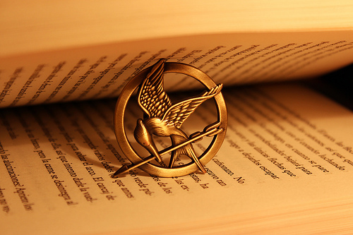 the_hunger_games_book_by_soulflie-d4xme8q