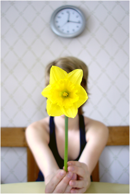 Daffodil__by_froststick